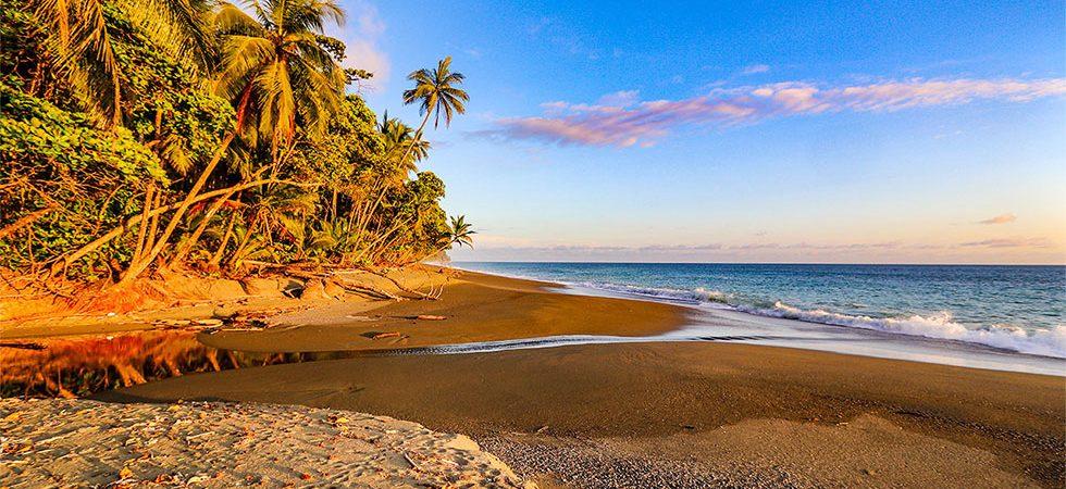 Rainforest Beachfront Property Filled with Wildlife Near Cabo Matapalo