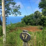 3 Acre Parcel In Dominical