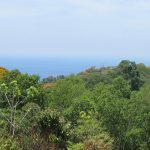 2.2 Acre Ocean View Land Parcel Escaleras