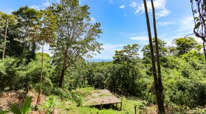 Bahia Ballena Property with a Great Location and Ocean View
