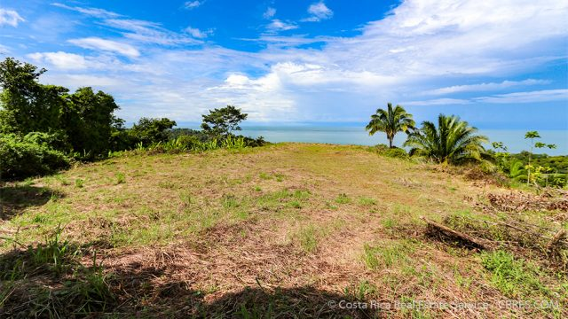 8.5 acre Land Above Punta Achiote