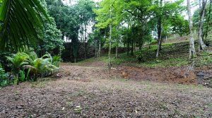Home Building Site Close to the Shores of Playa Hermosa Near Uvita