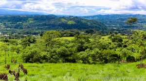 12 Acre Subdividable Land Parcel with Great Views Near the City of San Isidro