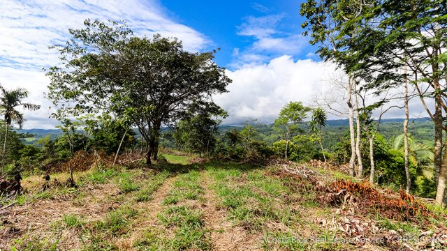 Easy Access to San Isidro