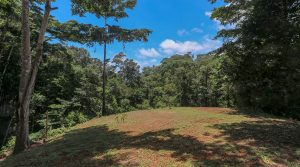 Property with Multiple Home Sites and a Year-Round Creek