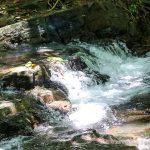 Year Round River