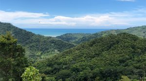 Cacao Ridge 2.5 To 45 Acre Land Parcels with Ocean And Valley Views