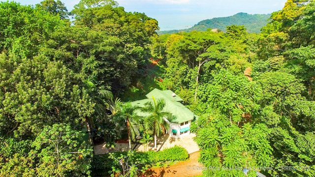 Rainforest Retreat in Dominical