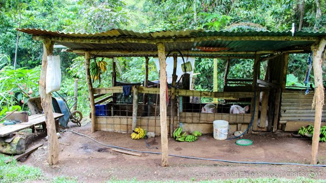 Self Sustainable Property for Sale in Costa Rica