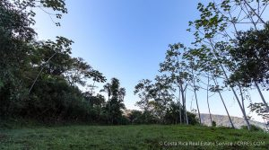 Homesite in Private Gated Community with Tropical Birds