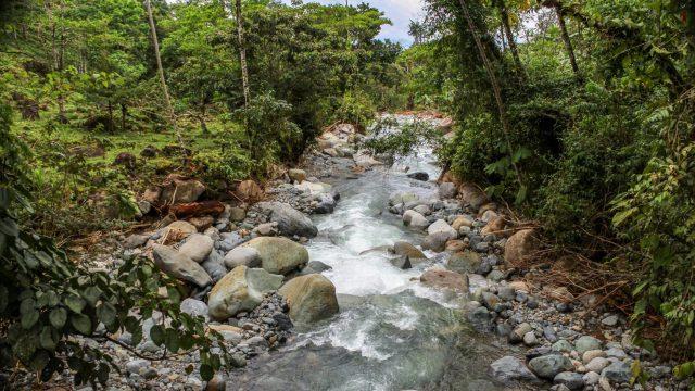 Beautiful Riverfrontage