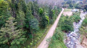 Great Deal for a Large Land Parcel in Quebradas Area of San Isidro