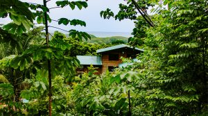 Private Ocean View Home and Building Site Near Dominical