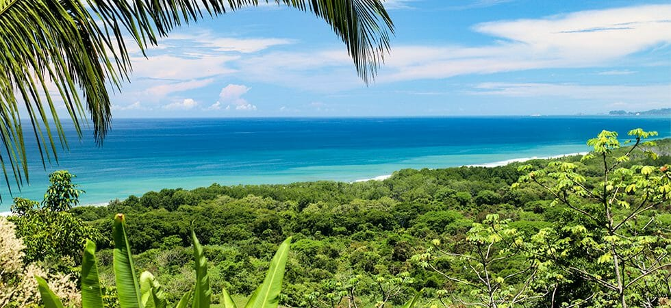 Fantastic Investment Opportunity near the Beach in Guapil Estates Dominical