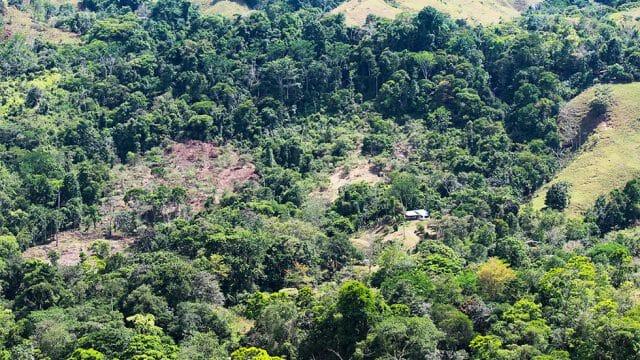 Large 49.42 Land Parcel near Nauyaca Waterfall