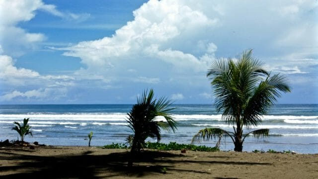 Walking Distance to Dominical Beach