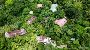 Self-Sustainable Organic Farm in Platanillo with Seven Homes