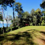 9.85 Acre Land Parcel