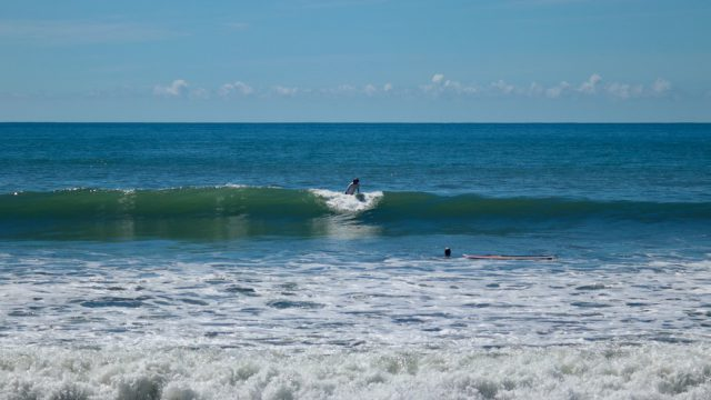 Surfers Dream Land