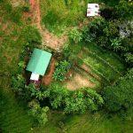 Organic Garden Areas