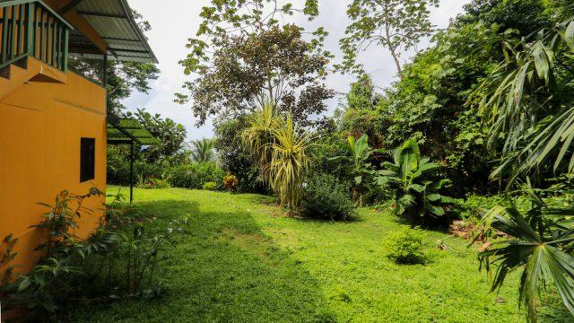 Lush Garden Areas