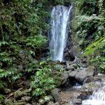 Pristine Waterfalls