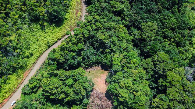 7.8-Acre Land Parcel