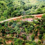 1.5-Acre Property in San Rafael de Platanares