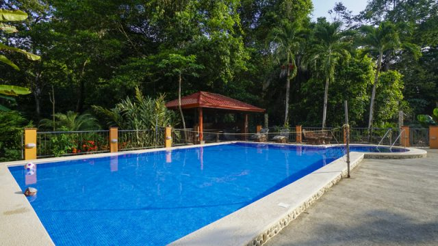 Resort Style Tropical Pool