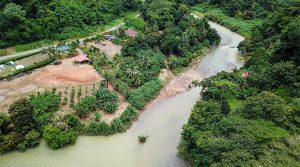 Two Homes on Baru River in Dominical with Commercial Potential