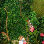 8.75 acre property near Tinamastes