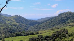50+ Acre Organic Farm in Tres Piedras with Mountain & Ocean Views