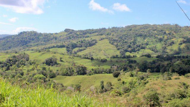 Over 90-Acres in Tres Piedras