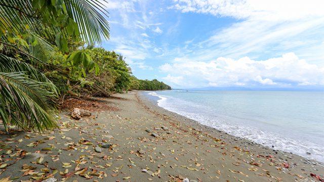 Pristine Tropical Beach