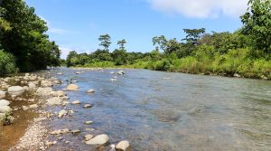 Riverfront Property in Uvita with Residential or Commercial Viability
