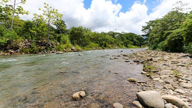 Uvita River Views
