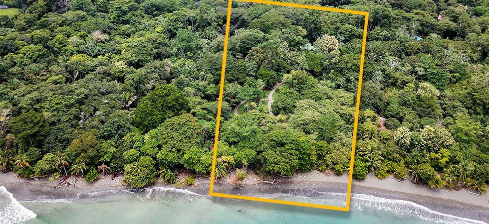 Beachfront Rainforest Retreat
