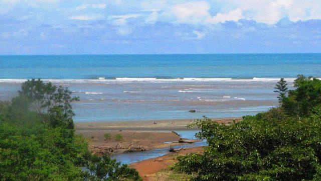 Walk to Tortuga Beach