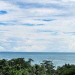 Ocean View Homes/Lots