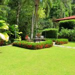 Lush Landscaped Gardens