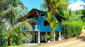 Two Beach Themed Rental Cabinas Amidst the Jungle of Escaleras