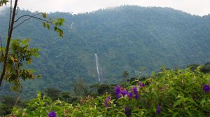 Lot with Dynamic Diamante Falls View Ready for Construction in San Salvador