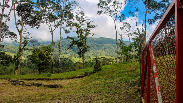 Mountain View Building Lots in Alfombra
