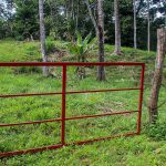 Gate to Every Lot