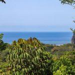 Playa Tortuga Reserve