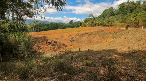 6+ Acres with Multiple Building Sites in the Mountains Above San Isidro