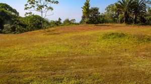 2 Acres with Building Site in High End Private Community Above Dominical