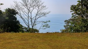 Large Ocean View Lot in Costa Verde on 5 Acres Above Dominical