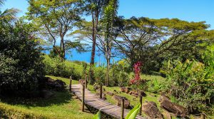 Charming Escaleras Retreat with Ocean Views Above Dominical