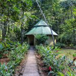 Privacy Among the Jungle